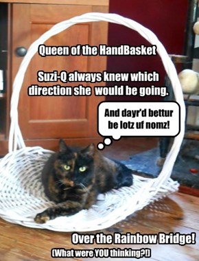 Rest in Peace, SUZI-Q! (1999 - 05-19-2016)