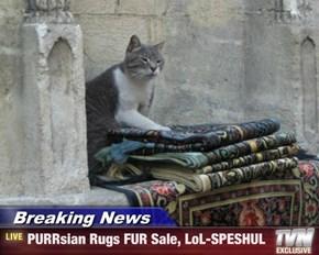 Breaking News - PURRsian Rugs FUR Sale, LoL-SPESHUL