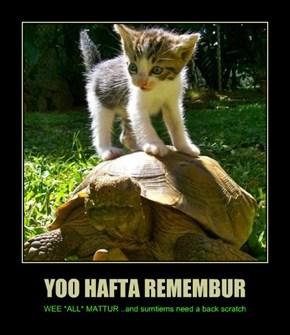 YOO HAFTA REMEMBUR