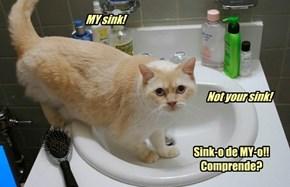 Mi Casa Es Su Casa. But My Sink Is MINE!