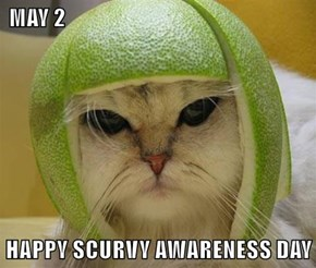 MAY 2  HAPPY SCURVY AWARENESS DAY