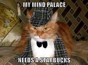 MY MIND PALACE   NEEDS A STARBUCKS