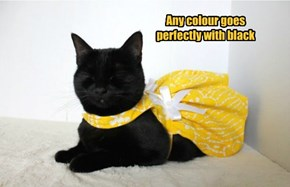 Any colour goes perfectly with black