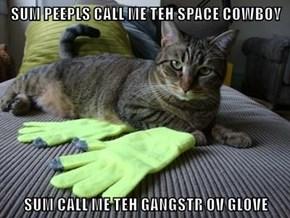 SUM PEEPLS CALL ME TEH SPACE COWBOY  SUM CALL ME TEH GANGSTR OV GLOVE
