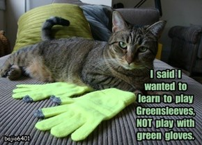 I  said  I  wanted  to  learn  to  play  Greensleeves,  NOT  play  with  green  gloves.