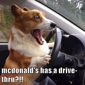 mcdonald's has a drive-thru?!!