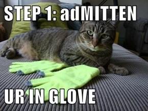 STEP 1: adMITTEN  UR IN GLOVE