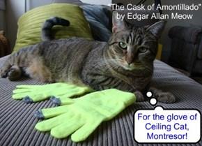 """""""The Cask of Amontillado"""" by Edgar Allan Meow"""