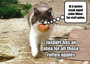 Jaspurr's brilliant idea