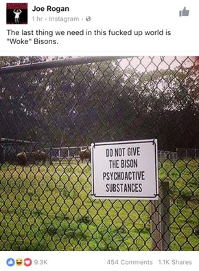These Bison Are Trippin' Out, Mann