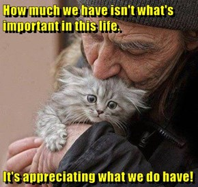 How much we have isn't what's important in this life.  It's appreciating what we do have!