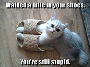 Walked a mile in your shoes
