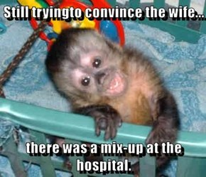 Still tryingto convince the wife...  there was a mix-up at the hospital.