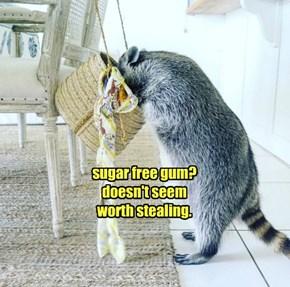 sugar free gum? doesn't seem worth stealing.