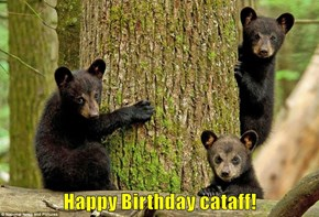 Happy Birthday cataff!