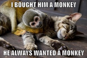I BOUGHT HIM A MONKEY  HE ALWAYS WANTED A MONKEY