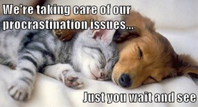 We're taking care of our procrastination issues...  Just you wait and see