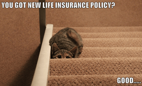 YOU GOT NEW LIFE INSURANCE POLICY?  GOOD.....