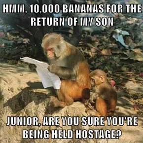 HMM, 10,000 BANANAS FOR THE RETURN OF MY SON  JUNIOR, ARE YOU SURE YOU'RE BEING HELD HOSTAGE?