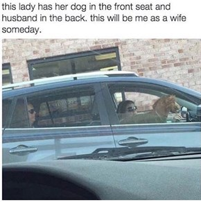 "The Dog Must Have Called ""Shotgun"""