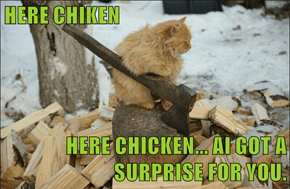 HERE CHIKEN  HERE CHICKEN... AI GOT A SURPRISE FOR YOU.