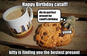 Happy Birthday, cataff
