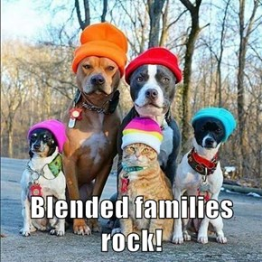Blended families rock!