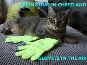 SPRINGTIME IN CHEEZLAND  GLOVE IS IN THE AIR