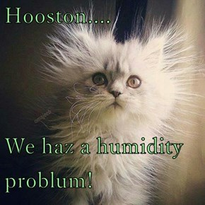 Hooston....  We haz a humidity problum!