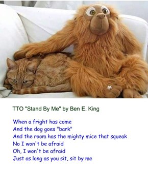 """Sit By Me"" (TTO ""Stand By Me"" by Ben E. King)"