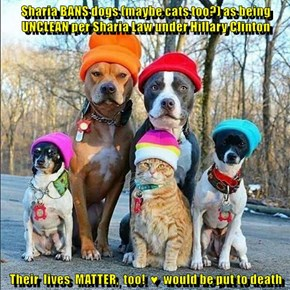 Sharia BANS dogs (maybe cats too?) as being UNCLEAN per Sharia Law under Hillary Clinton  Their  lives  MATTER,  too!  ♥  would be put to death