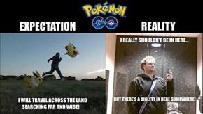 Pokémon GO Expectation v. Reality