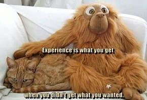 Experience can be hairy