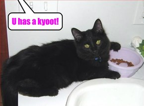 U has a kyoot!