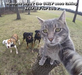 Humans aren't the ONLY ones taking SELFIES fur LOL ♥