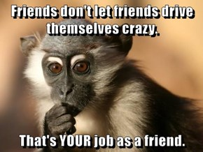 Friends don't let friends drive themselves crazy.  That's YOUR job as a friend.