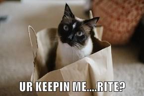 UR KEEPIN ME....RITE?