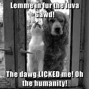 Lemme in fur the luva Gawd!  The dawg LICKED me! Oh the humanity!