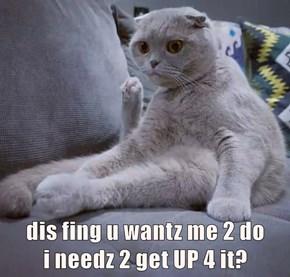 dis fing u wantz me 2 do                                                                          i needz 2 get UP 4 it?