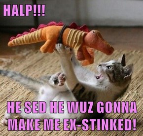 HALP!!!  HE SED HE WUZ GONNA MAKE ME EX-STINKED!