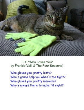 """Who Gloves You"" (TTO ""Who Loves You"" by Frankie Valli & The Four Seasons)"