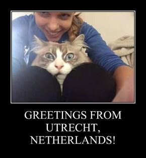 GREETINGS FROM UTRECHT, NETHERLANDS!