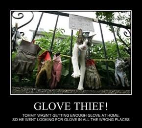 GLOVE THIEF!