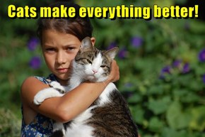 Cats make everything better!