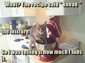 "Whut? The recipe said "" knead ""  the mixture So I was telling it how much I lubs it."
