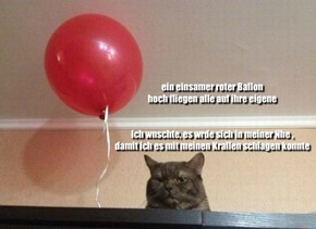 One lonely red balloon, Flying high all on its own _ I wish it would come close to me so I could hit it with my claws
