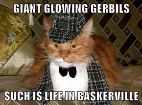 GIANT GLOWING GERBILS  SUCH IS LIFE IN BASKERVILLE