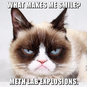 WHAT MAKES ME SMILE?  METH LAB EXPLOSIONS.