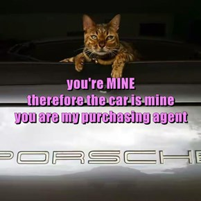 you're MINE                                                                                             therefore the car is mine                                         you are my purchasing agent
