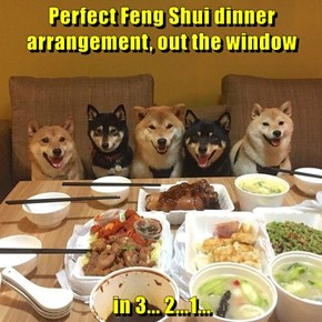 Perfect Feng Shui dinner arrangement, out the window  in 3... 2...1...